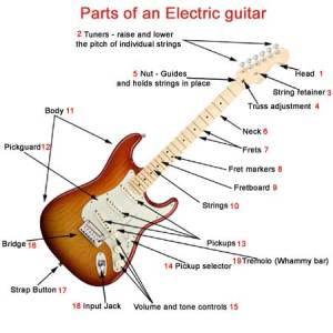 Parts of an electric guitar  What makes a electric guitar
