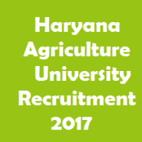 Haryana Agriculture University Recruitment 2017