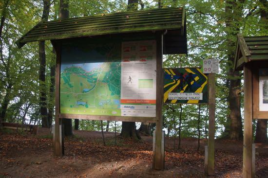 skov-rute