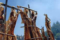 Traditional Lamb BBQ, Saturna Island, British Columbia