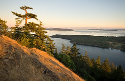 Mt. Norman, Gulf Islands National Park Reserve of Canada, South Pender Island, British Columbia