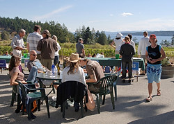 Wine festival at the Vineyard Bistro, Saturna Island, British Columbia