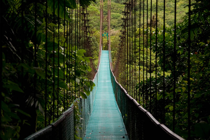 Costa Rica - hanging bridge in the costa rican jungle