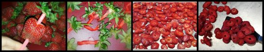 strawbCollage