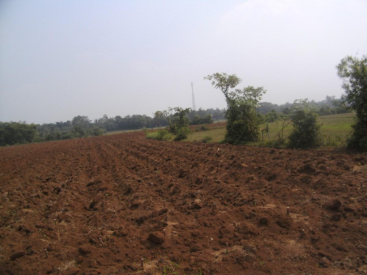 Dokumen-Dokumen Yang Dapat Menjadi Bukti Penguasaan Atas Tanah