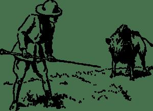 Gum Log Plantation hunting tips