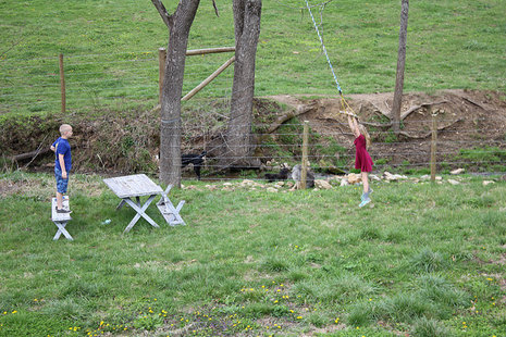 The Trapeze Swing