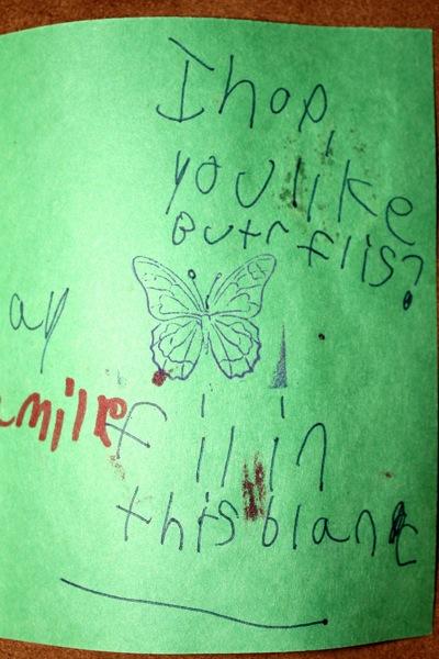 I hope you like buttterflies