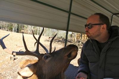 Daddy Loves Mr. Deer