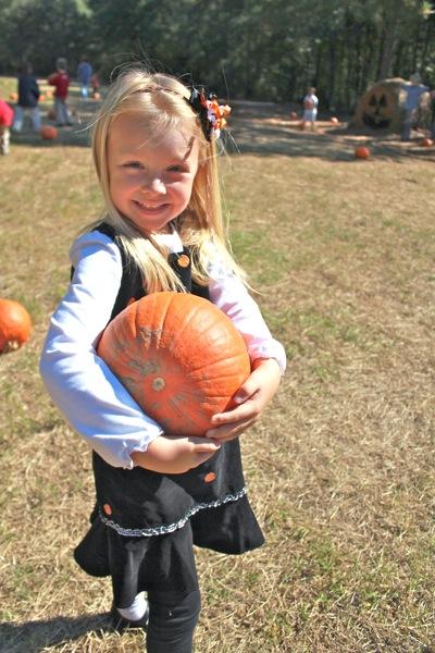 Pumpkin is Picked