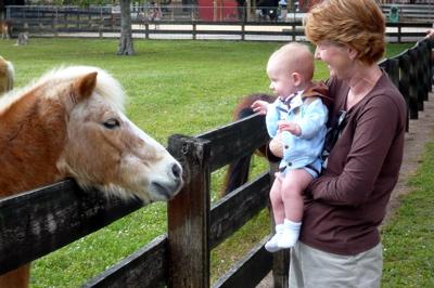 Jones likes ponies, too