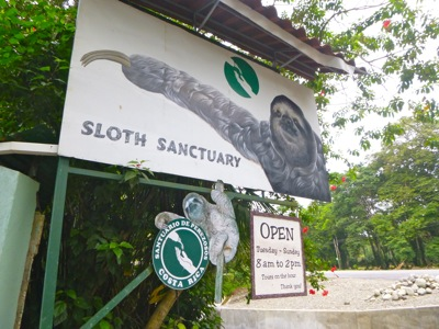 The Sloth Sanctuary