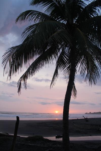 Marbella Sunset