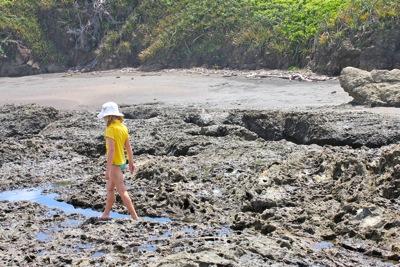 Walking the Tidal Pools