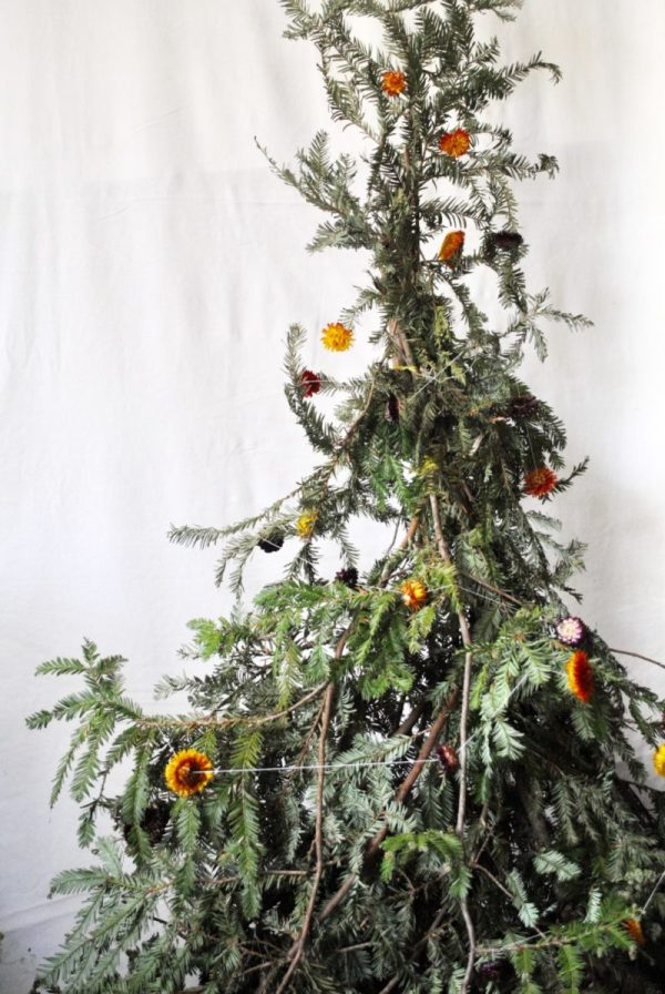 A simple christmas tree made from tied together sequoia branches