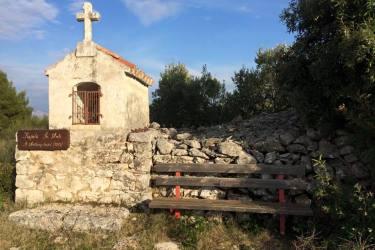 Hiking olive grove routs near Mirca