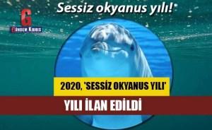 Το 2020 ανακηρύχθηκε «Έτος του Σιωπηλού Ωκεανού»