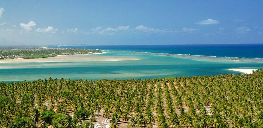 Mirante da Praia do Gunga