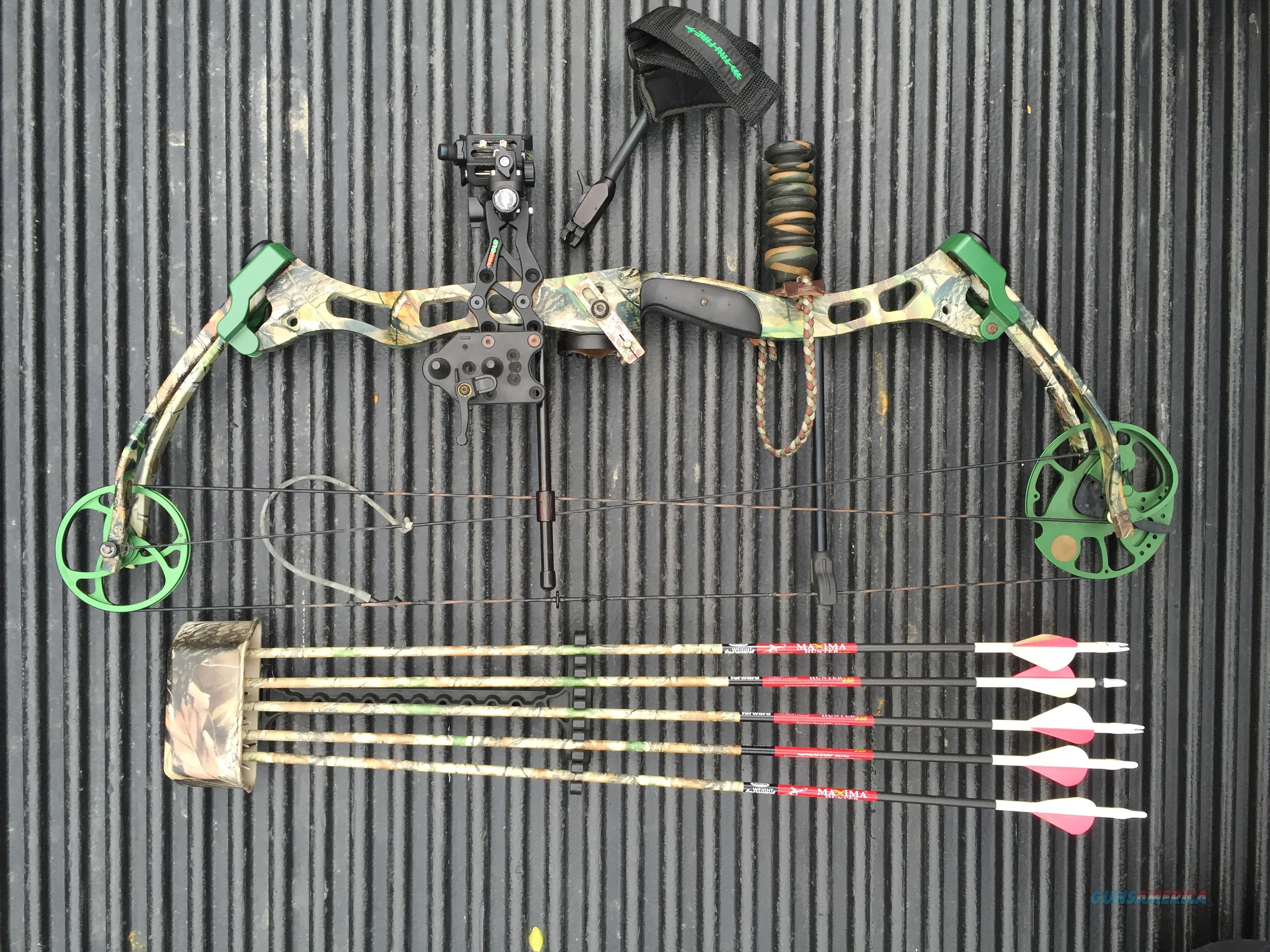 Bear Lights Out String