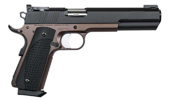 Dan Wesson Bruin right side