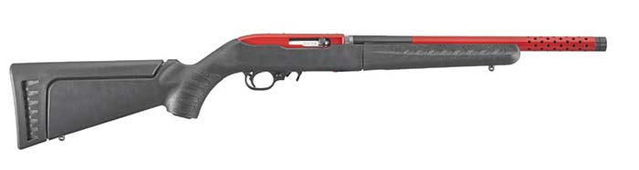 Ruger 10-22 Takedown Lite rifle