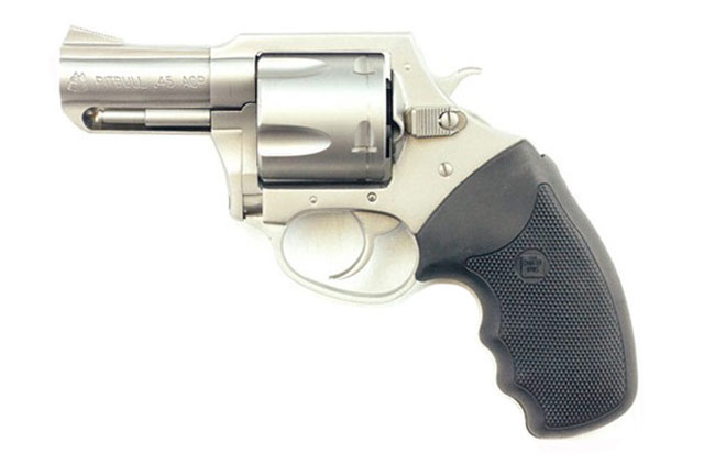 Charter Arms Pit Bull 45 ACP