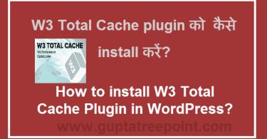 W3 Total Cache plugin