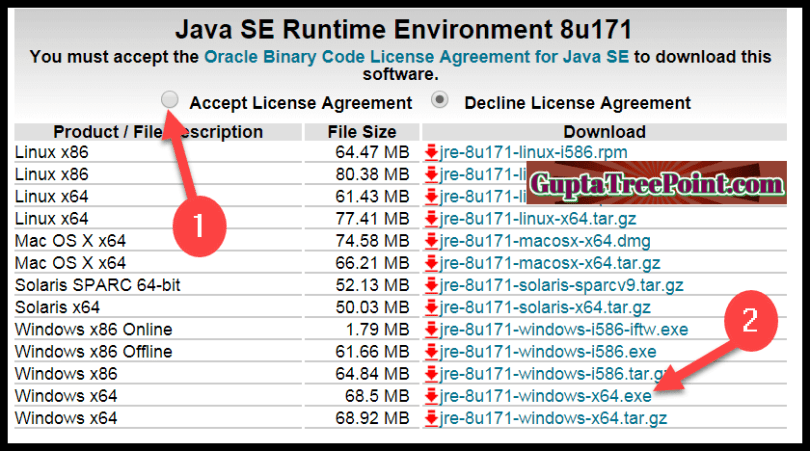Java Software File