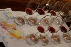 Gusto Şarap Kursu Bölge Bölge Dünya Şarapları