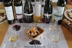 Istanbul Culinary Studio'da Sevilen Şarapları Tadımı
