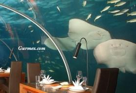 Maldivler'de bulunan Ithaa Restoran, dev bir akvaryumun içine kurulmuş.