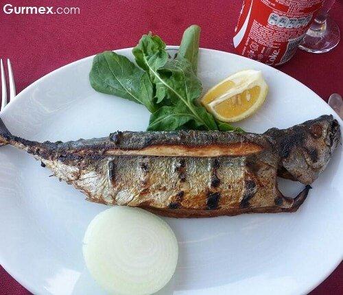 agvanin-en-guzel-manzarali-restorani-raki-balik-fasil-mekan-kilimli-restaurant-tesisleri-agva-sile-istanbul-gurme-blog