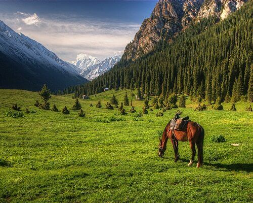 Kırgızistan Gezilecek Yerler,Kırgızistan Yemekleri