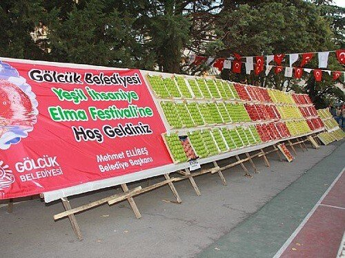 Yemek festivalleri, Gölcük yeşil ihsaniye elma festivali Kocaeli