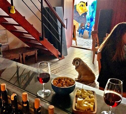 Çamlıbağ Şarapları Bozcaada, Bozcaada'da şarap nerede içilir