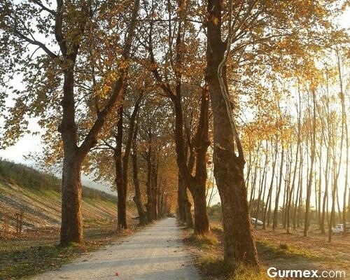 Bursa'da hafta sonu gezilecek doğa rotaları,Kestel Dudaklı ve Gölbaşı Göleti