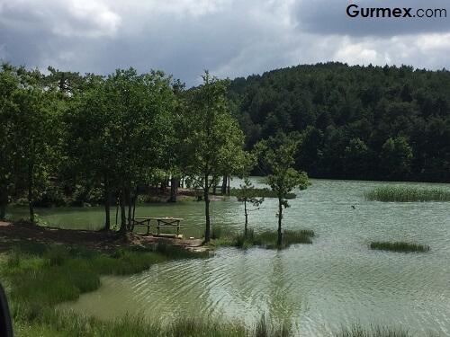 Bursa'da hafta sonu gidilebilecek yerler,Gürsu Ericek Göleti
