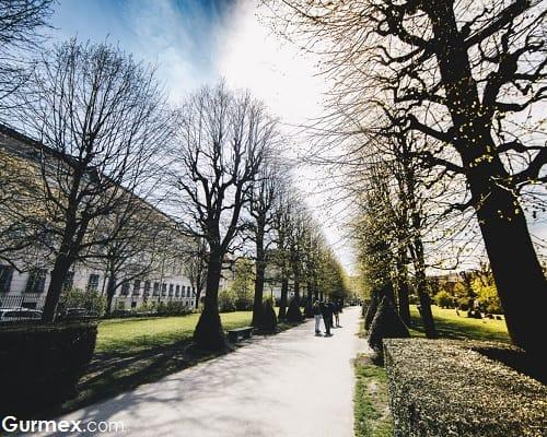 Volksgarten şehir parkı Avusturya Viyana gurme