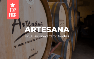 Artesana – Uruguay vineyard for foodies