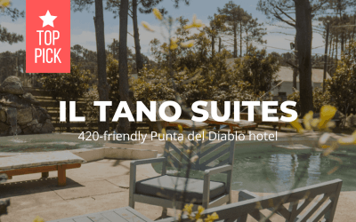 Il Tano Suites – 420-friendly Punta del Diablo hotel