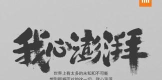 xiaomi-pinecone