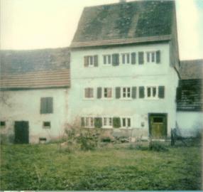Steinhart alt