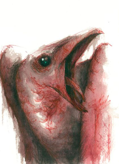 Dibujo: Biliares { Furias } A1 | por Gustavo A. Díaz G.
