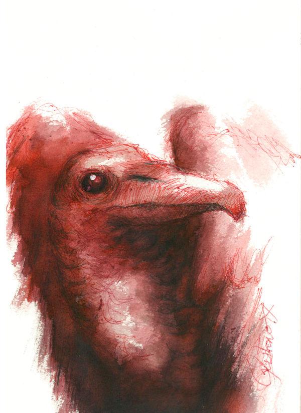 Dibujo: Biliares { Furias } A5 | por Gustavo A. Díaz G.