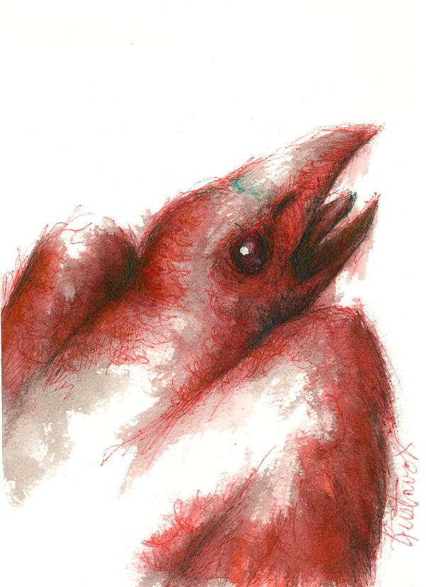 Dibujo: Biliares { Furias } C4 | por Gustavo A. Díaz G.