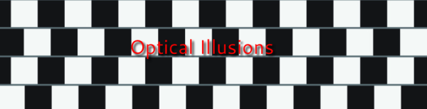 optical illusions esl # 48