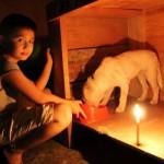 Tierrettung auf den Philippinen – Ein Neunjähriger hat einen Traum