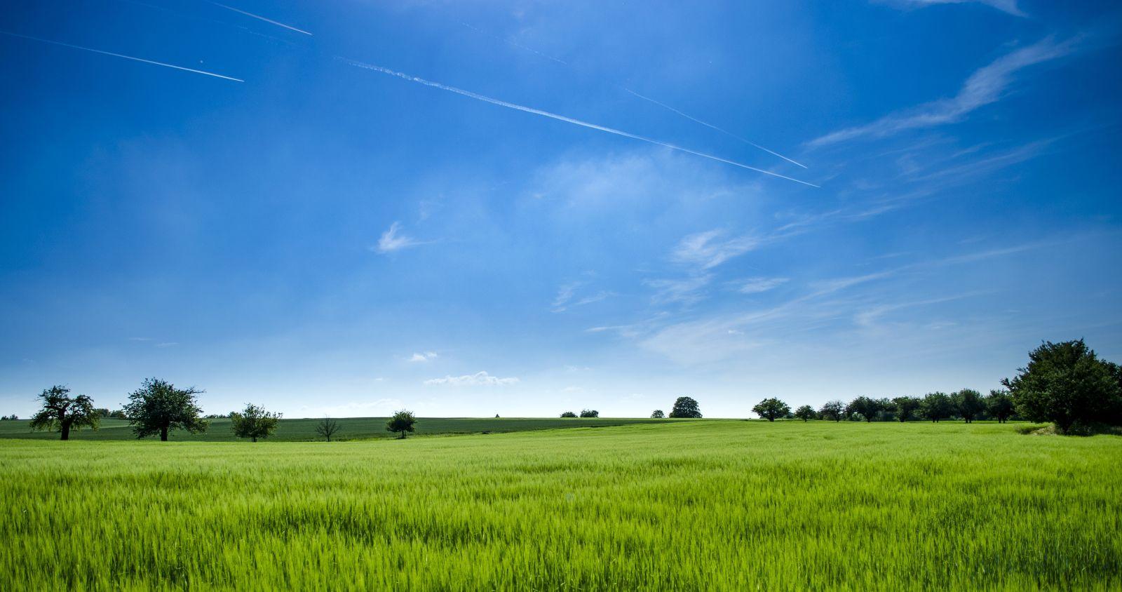 Blauer Himmel, grüne Wiesen, weites Land