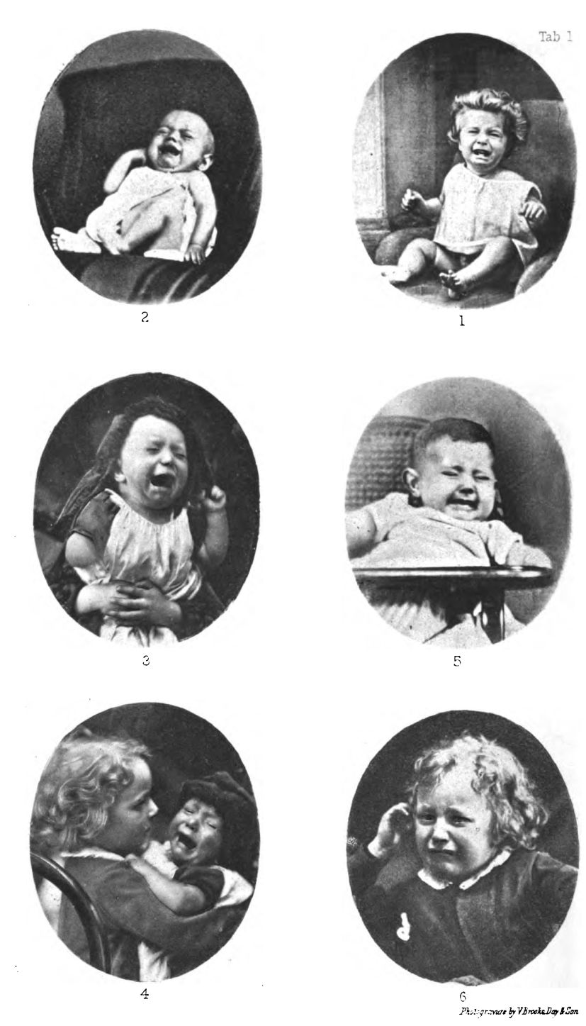 Screaming Infants. Plate I.