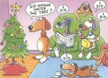 Funny dog pictures for Christmas